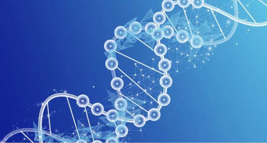 解析国内最大消费级基因检测和癌症筛查基因检测平台的成功要素