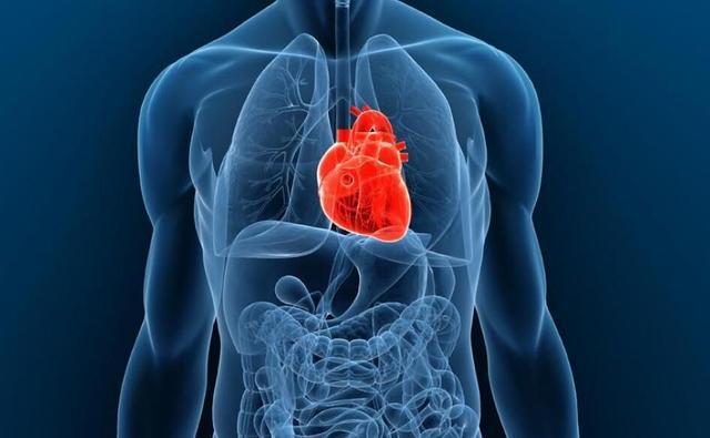 拥有全球唯一获FDA批准上市的全人工心脏,Syncardia如何为国内同行树立标杆?